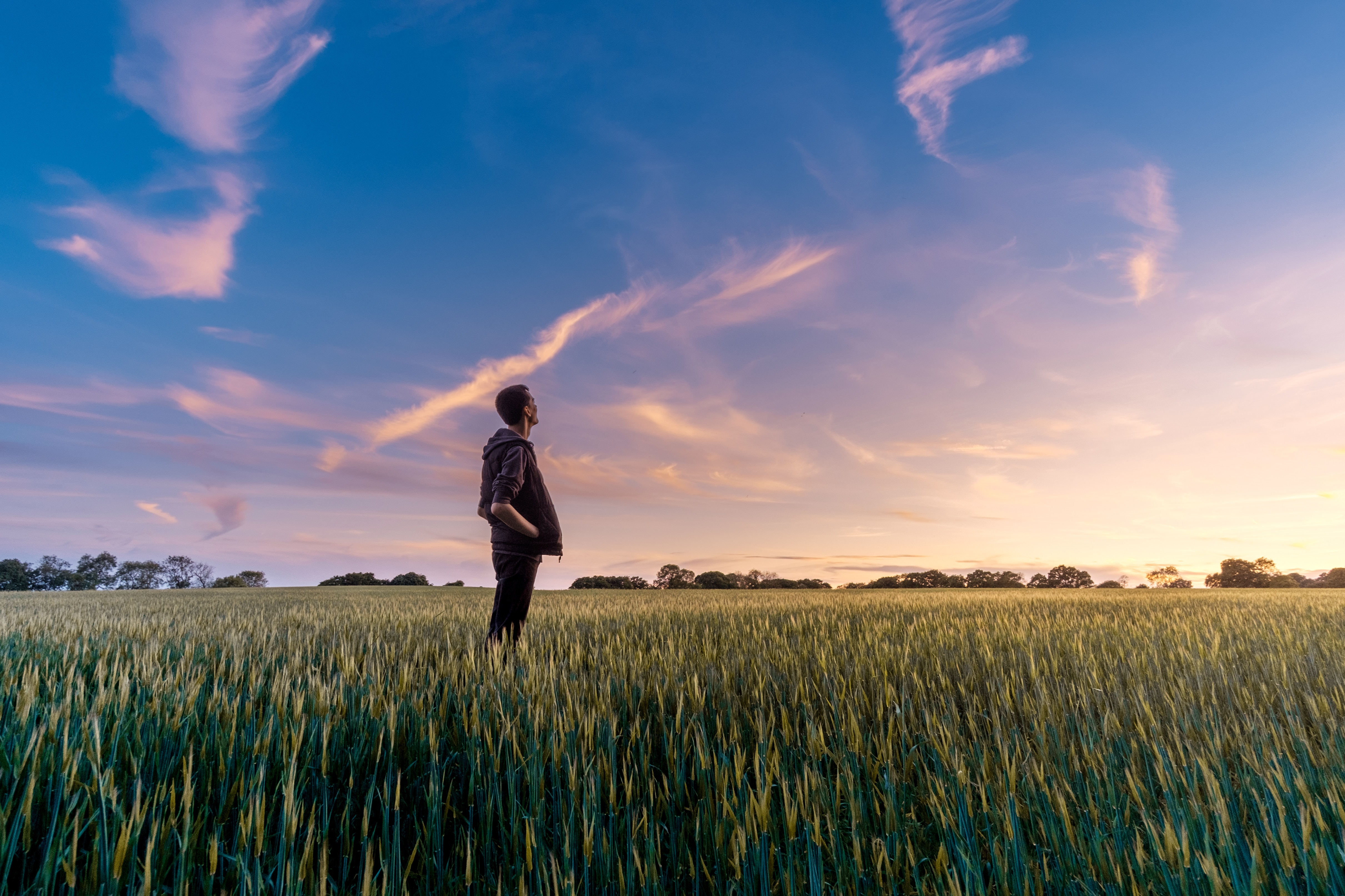 Man standing in field looking up at sky