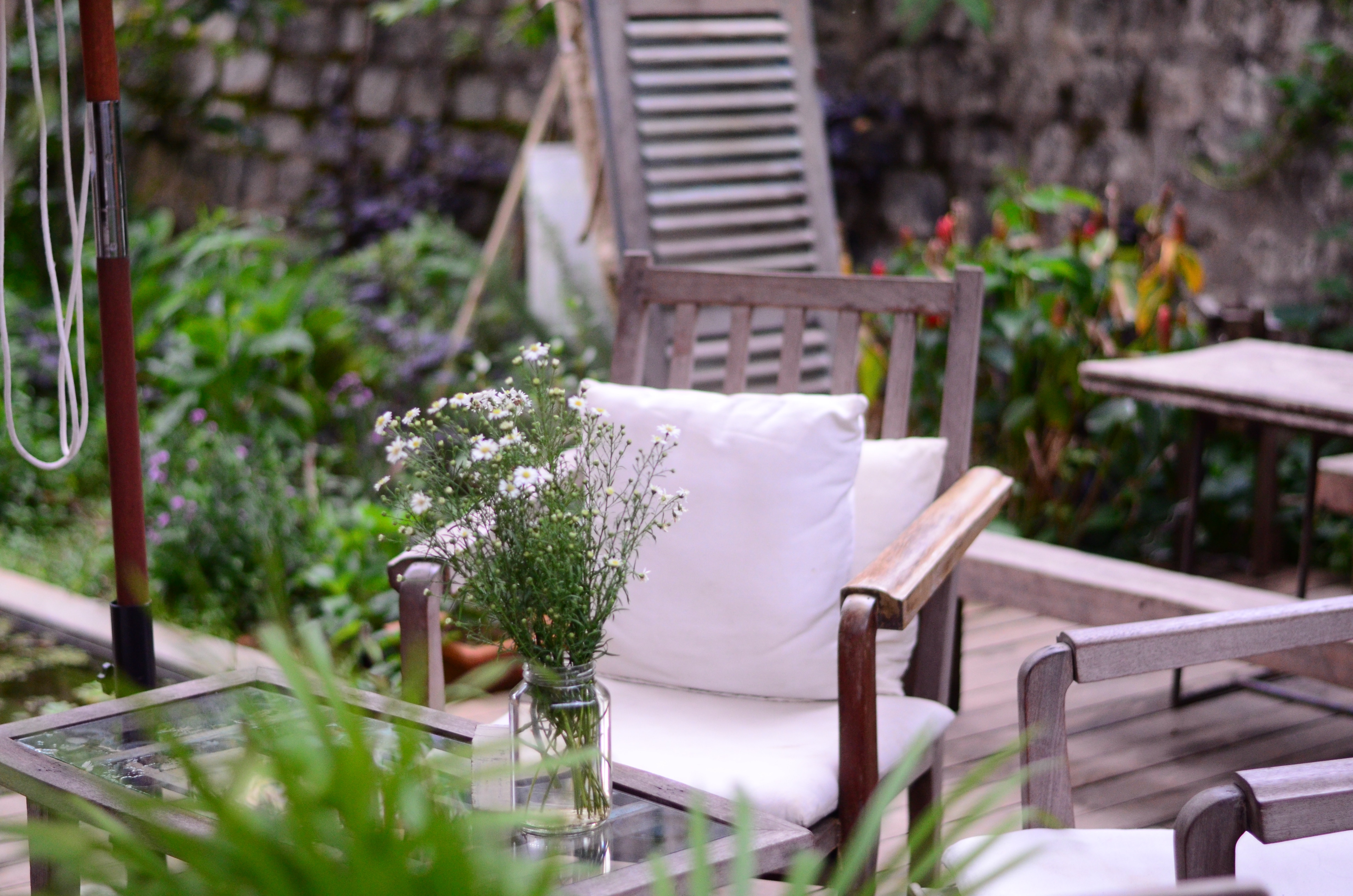 patio furniture and plants