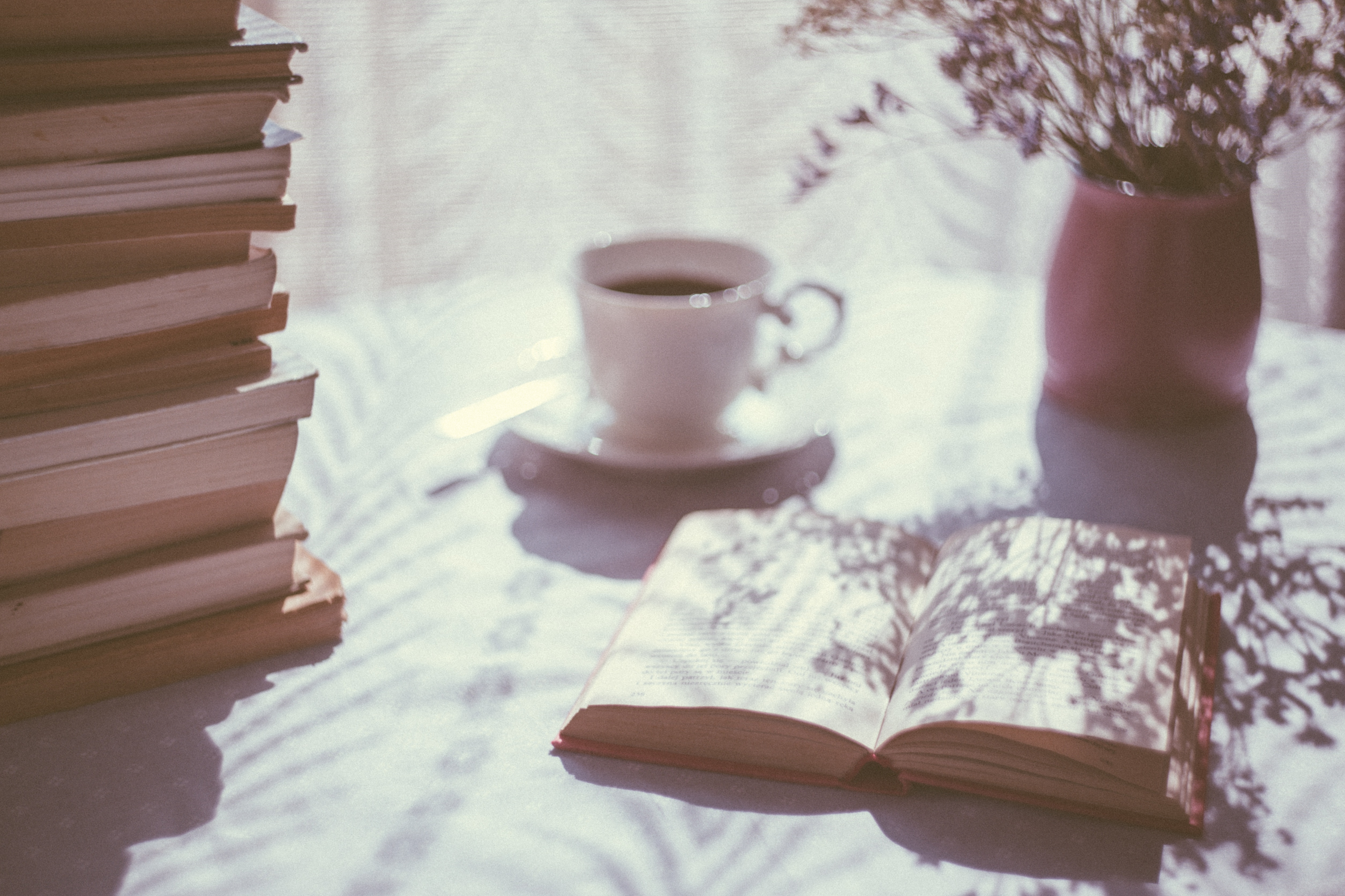 open book on sunlit table